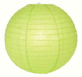 5 x Lampion licht groen (kleur 2) 25 cm