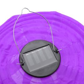 5 x Solar Lampion rund violett 35 cm (Solarenergie)