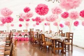 5 x Licht roze PomPom 35 cm