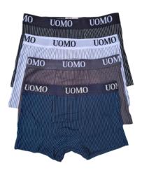 UOMO classic stripes new
