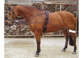 HARRY'S HORSE Pessoateugel