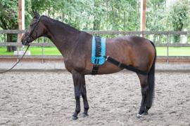 HARRY4S HORSE Longeerband (elastisch)