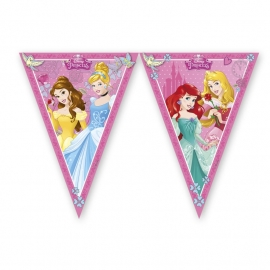 Disney Princess Dreaming vlaggenlijn 2,3 mtr.