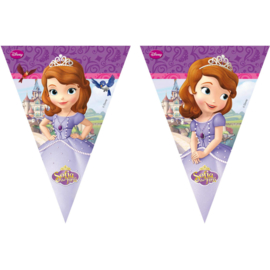 Disney Sofia the First vlaggenlijn 2,3 mtr.
