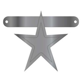 Banner symbool ster metallic zilver