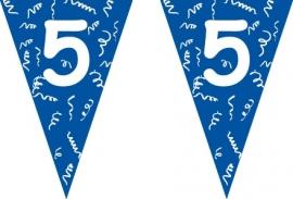 Vlaggenlijn blauw 5 jaar 5 mtr.