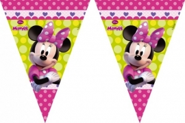 Disney Minnie Mouse bowtique vlaggenlijn 2,3 mtr.
