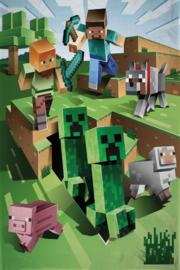 Minecraft fleecedeken 130 x 170 cm.