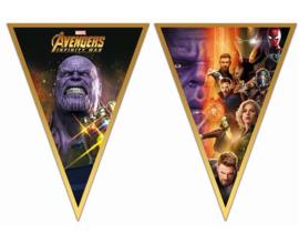 Avengers Infinity War vlaggenlijn 2,3 mtr.
