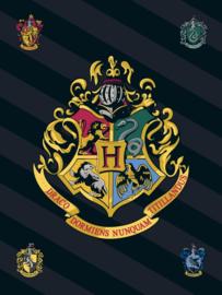 Harry Potter Hogwarts fleecedeken 100 x 140 cm.
