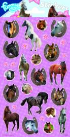 Paarden stickervel B 20 x 10 cm.