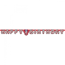 Disney Minnie Mouse leeftijd letterslinger happy birthday 1,8 mtr.