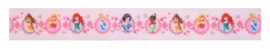 Disney Princess  taart lint 1 mtr.