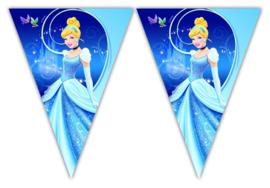 Disney Princess Assepoester vlaggenlijn 3 mtr.