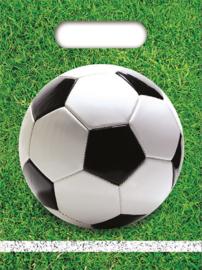 Voetbal traktatiezakjes 6 st.