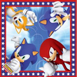 Sonic The Hedgehog party servetten 16 st.