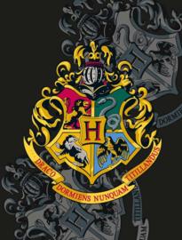 Harry Potter fleecedeken Hogwarts 130 x 170 cm.