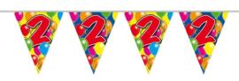 Vlaggenlijn balloons 2 jaar 10 mtr.