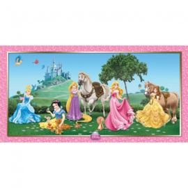 Disney Princess muur decoratie 150 x 77 cm.