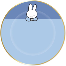 Baby Nijntje gebakbordjes blauw ø 18 cm.