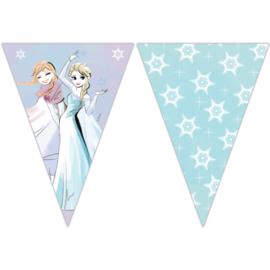Disney Frozen Sparkle vlaggenlijn 2,3 mtr.