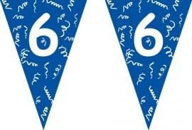 Vlaggenlijn blauw 6 jaar 5 mtr.