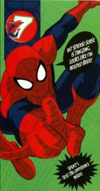 Spiderman verjaardagskaart 7 jaar