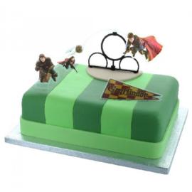Harry Potter taart decoratie set