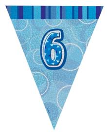 Vlaggenlijn blue glitter 6 jaar 2,74 mtr.