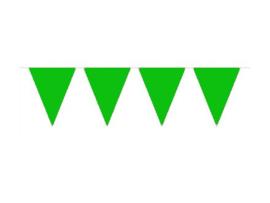 Vlaggenlijn groen 10 mtr.