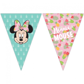 Disney Minnie Mouse tropical vlaggenlijn 2,3 mtr.