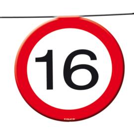 Vlaggenlijn verkeersbord 16 jaar 12 mtr.