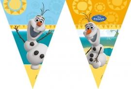 Disney Frozen Olaf vlaggenlijn summer 2,3 mtr.