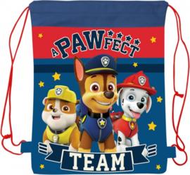 Paw Patrol gym- zwemtas A Pawfect Team 42 x 32 cm.