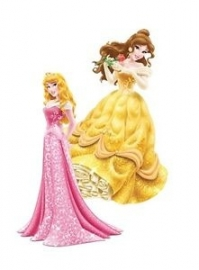 Disney Princess Belle en Doornroosje hangdecoratie set 30 cm.