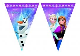 Disney Frozen Northern Lights vlaggenlijn 2,3 mtr.