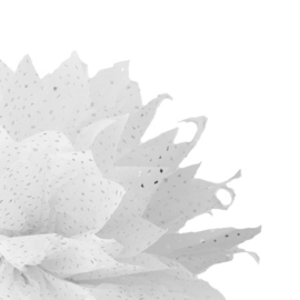 Tissue Paper Special Zilver vlok