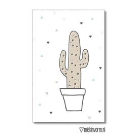 Cactus - Mini