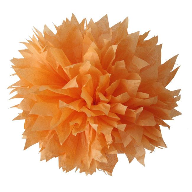 PomPom Sinaasappel