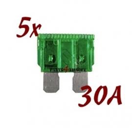 Autozekering 30A - 5st (P4A528)