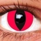 Red Cat . 510
