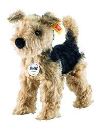 033735 Terri Welsh Terrier