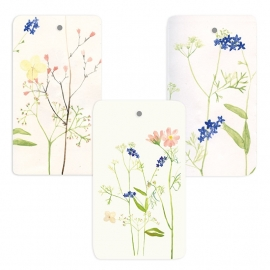Set of flower giftcards