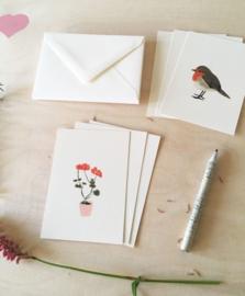Mini cards and envelop | geranium & robin (set)