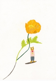 print | Cat and Californian poppy