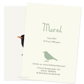 Birth card 'Black bird'