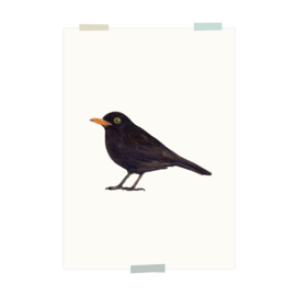 print | Black bird