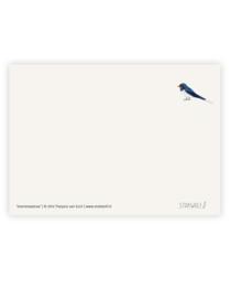 postkaart 'Boerenzwaluw'