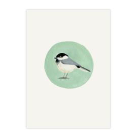 postkaart 'Matkop'