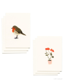 Mini cards and envelop | geranium & robin (set)